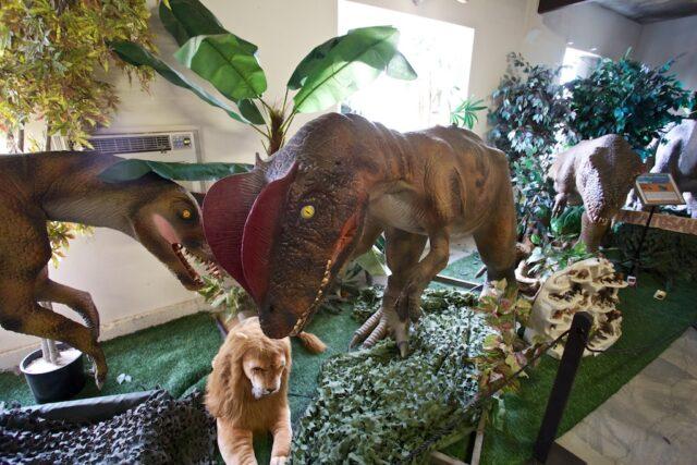 Cabazon Dinosaurs 12