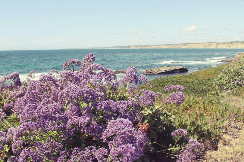 Best Kept Secret Beaches In Southern California