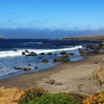 coast-from-elephant-seal-viewing-area
