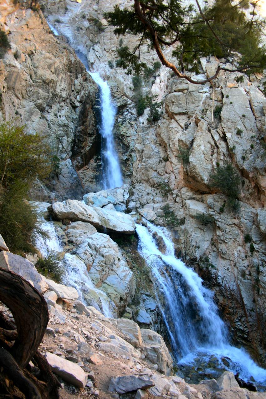 Big falls forest falls