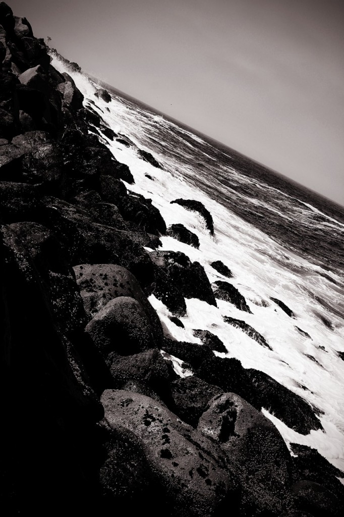 Black and White Morro Bay State Park Coast
