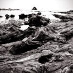 Black and white tidepools 150x150