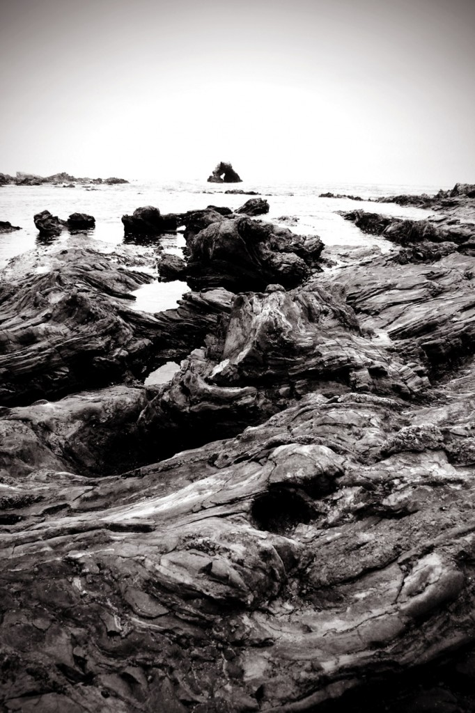 Black and white tide pools