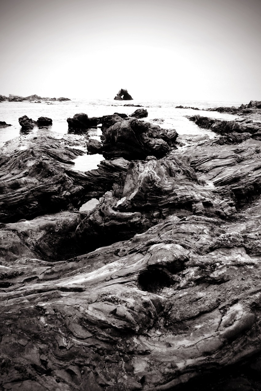Tide Pools Of Little Corona Del Mar California Through My Lens