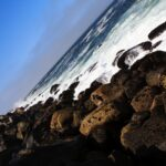 Morro Bay State Park Coast
