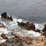 Tide pools in little corona del mar