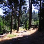 Trail to seeley falls