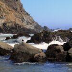 ocean pfieffer state beach