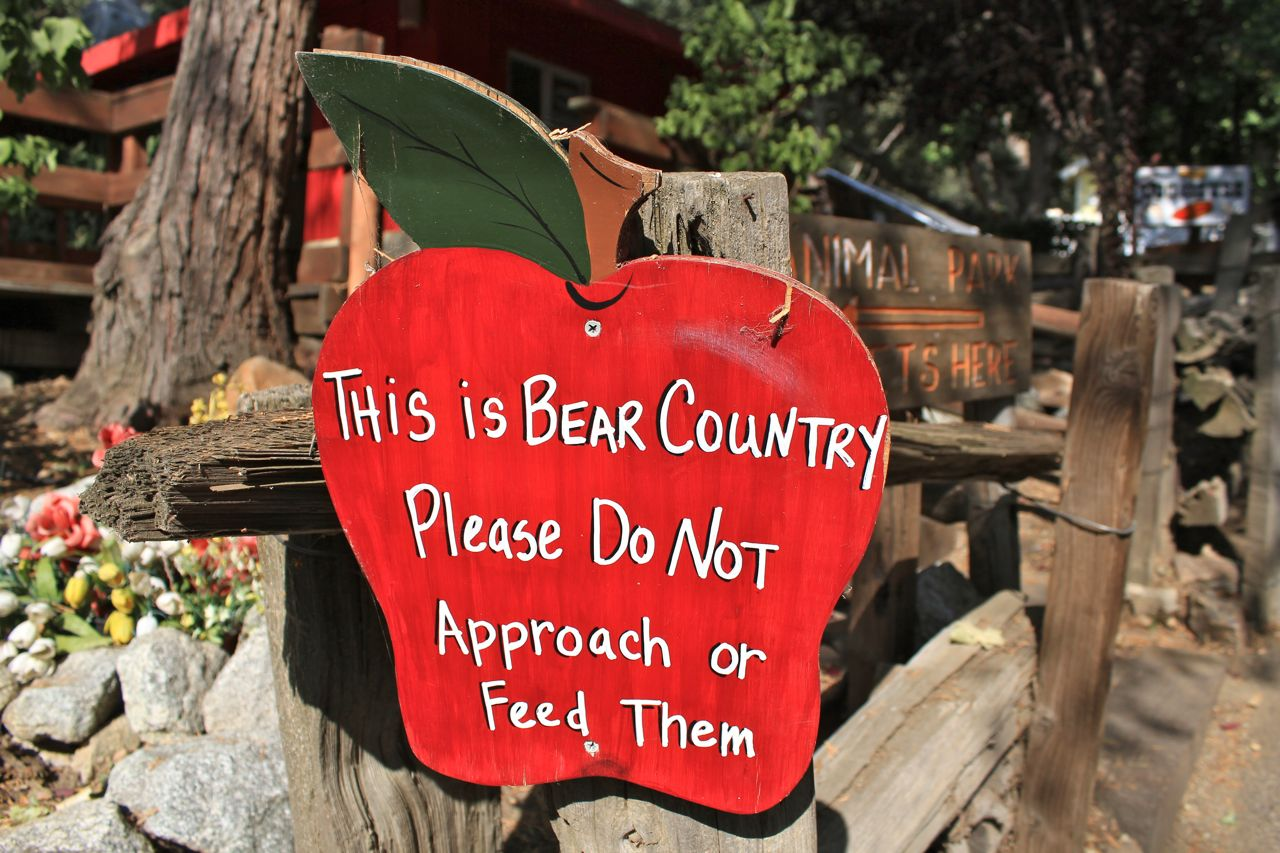 Bear country sign