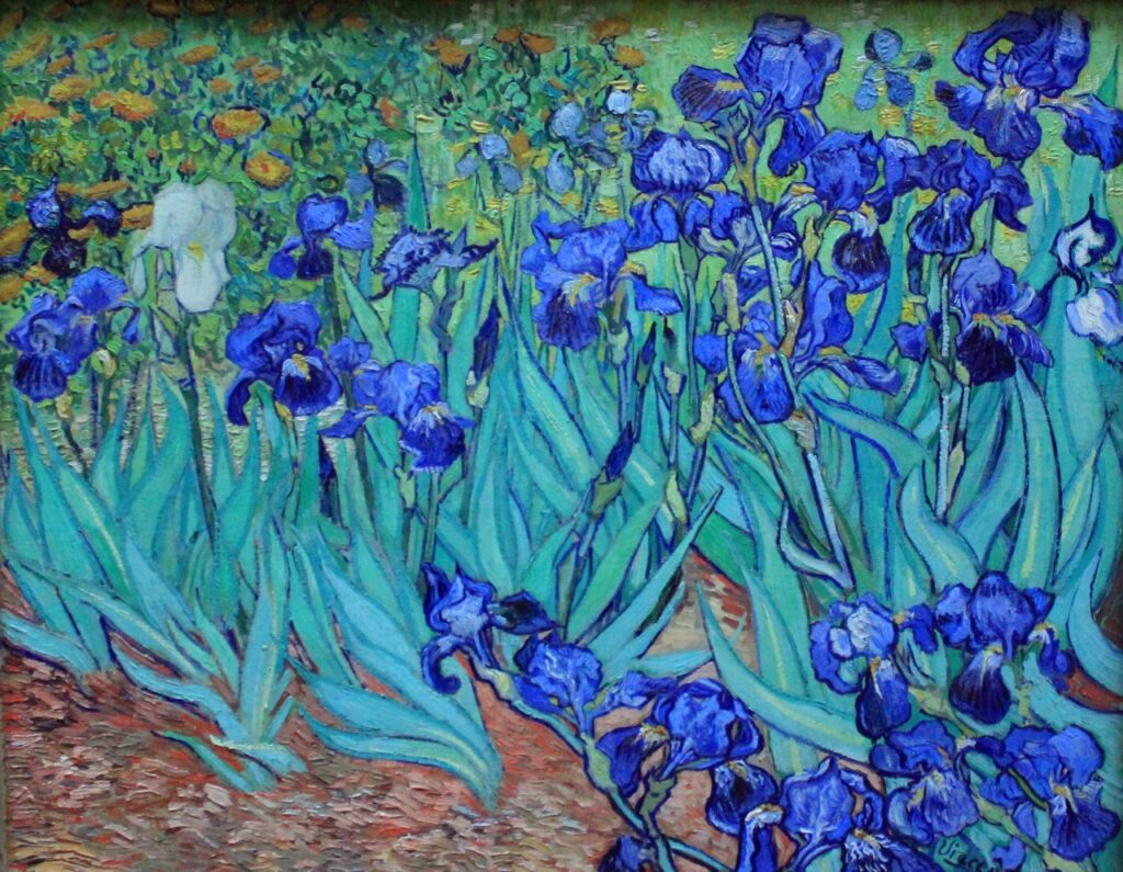 The Getty Museum In Los Angeles  Photos  Paintings  Sculptures    Van Gogh Irises Getty