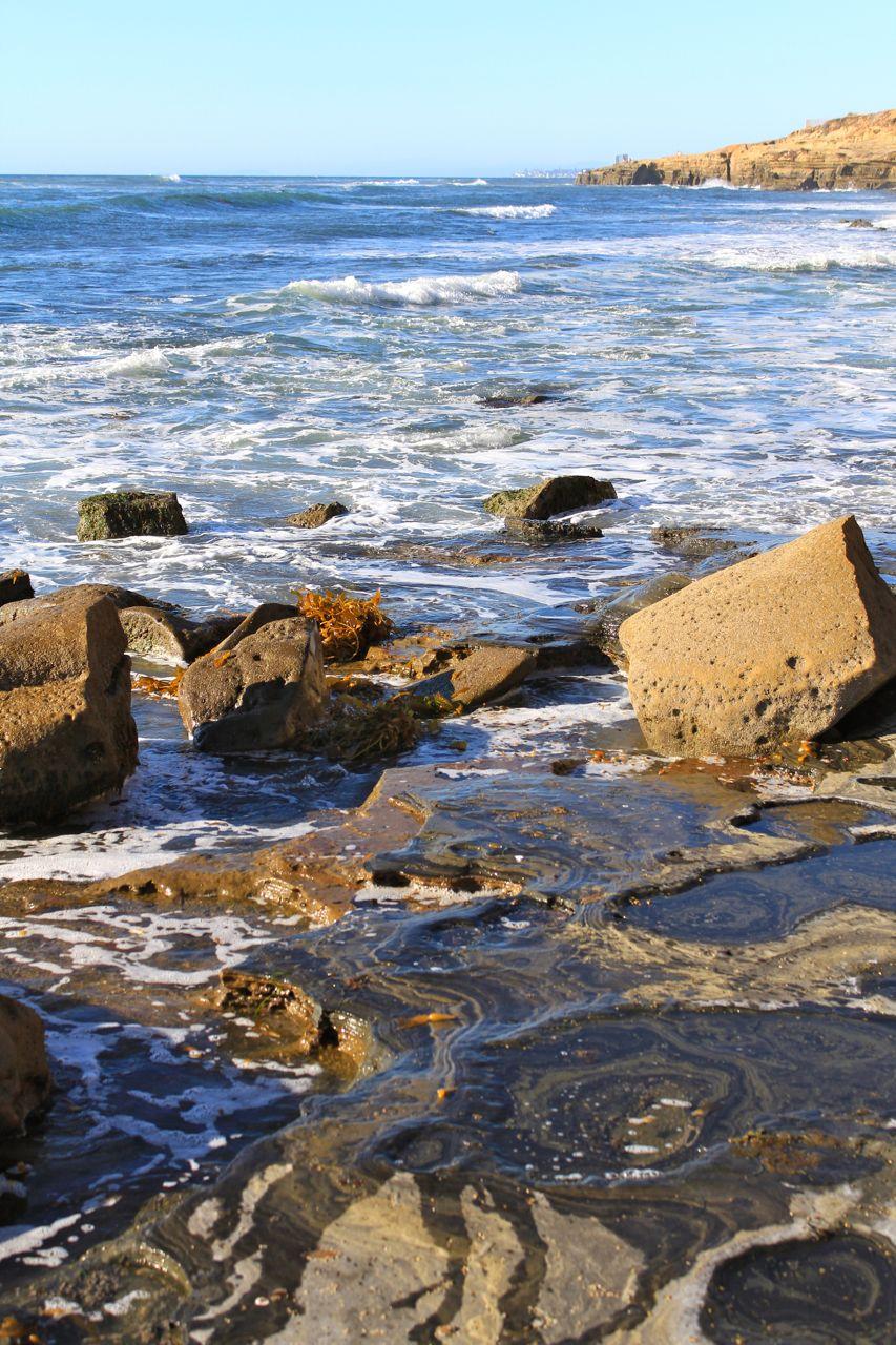 Sunset Cliffs Park In San Diego California Through My Lens
