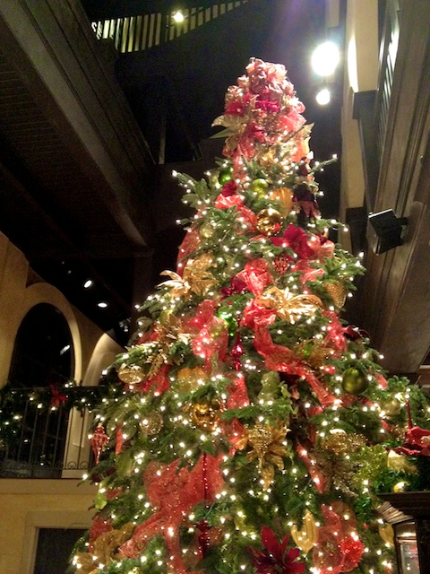Mission Inn Tree