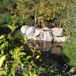 Stone brewery gardens