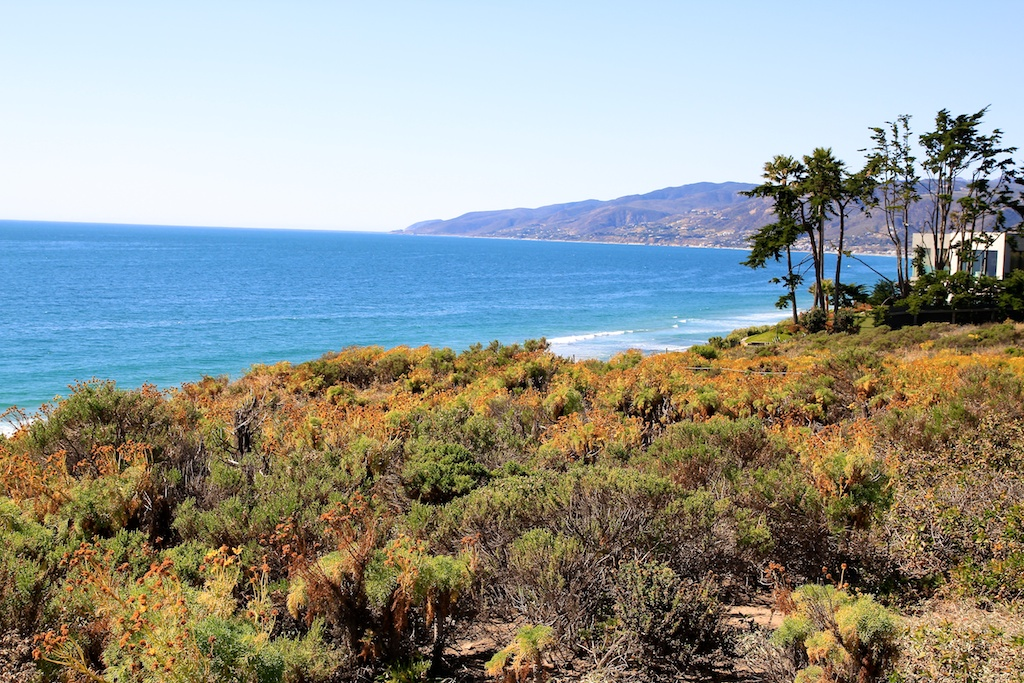 Point Dume State Beach: The Beautiful Coast of Malibu