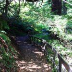 Ewoldsen Trail 1