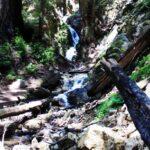 Ewoldsen Trail 7