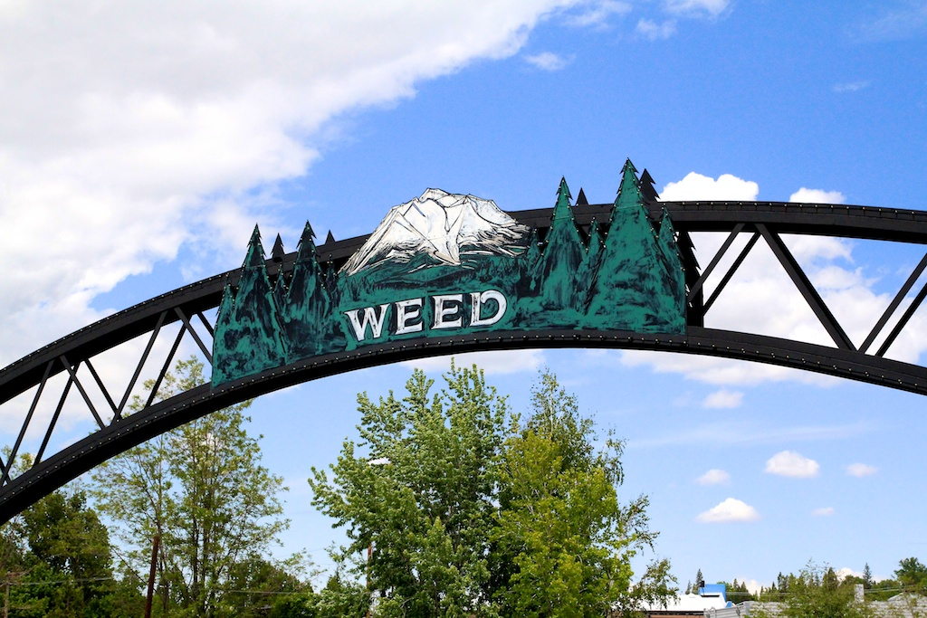 Weed, California: 3,000 People and a Gift Shop