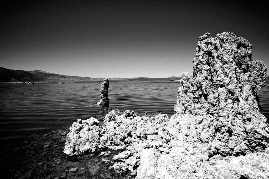 Mono Lake Tufas Alkali Flies And Shorebirds California