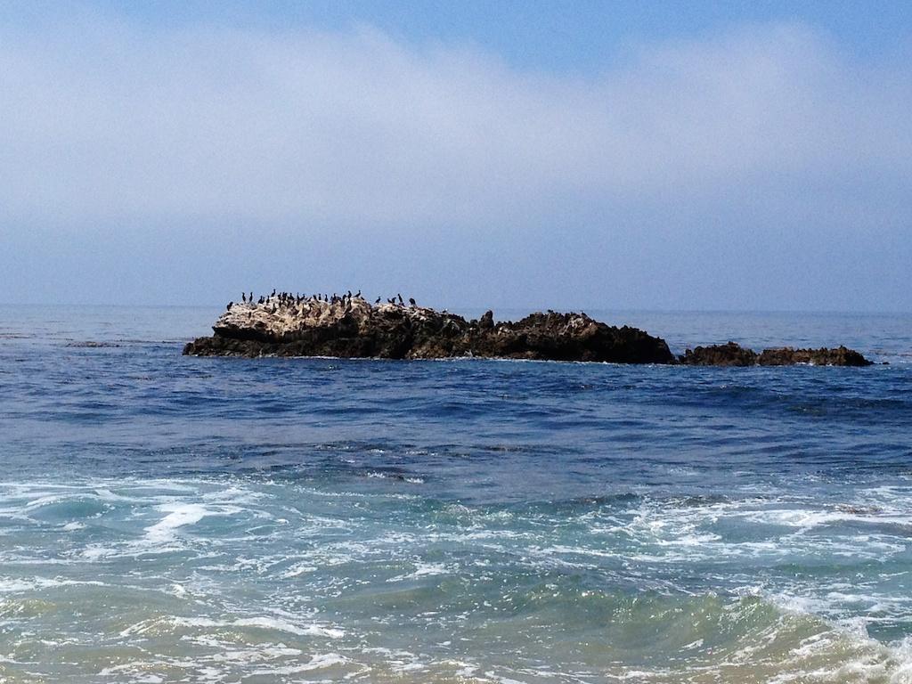 Bird Rock off Laguna Beach