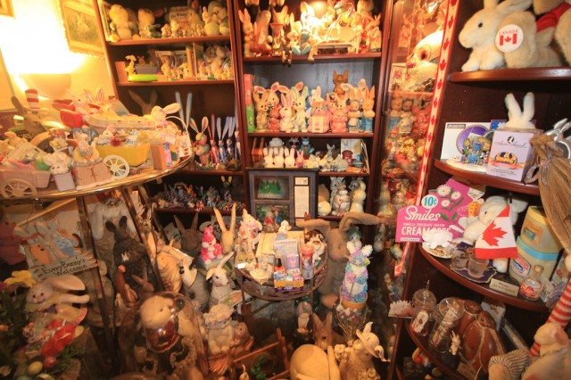 Bunny Museum 8