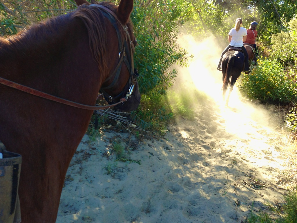 Horseback Riding in the Inland Empire with Western Trails