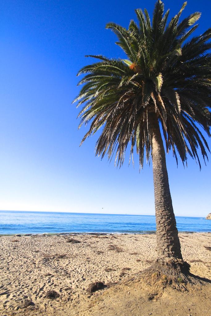 Refugio State Beach California Through My Lens
