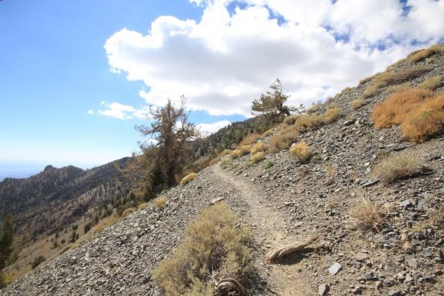 Telescope Peak 15