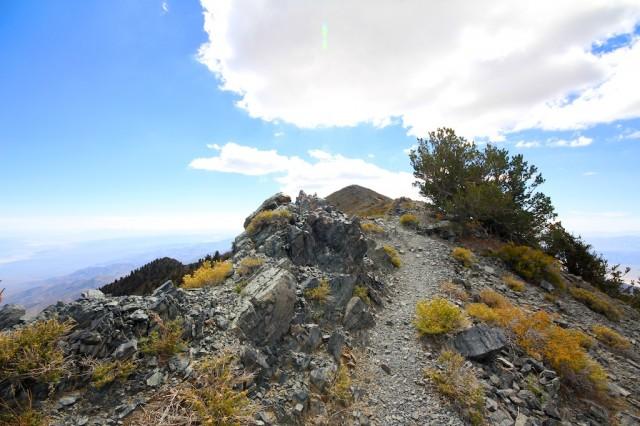 Telescope Peak 2