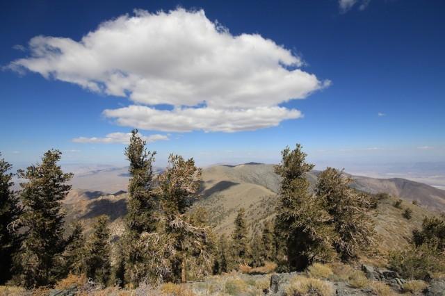 Telescope Peak 9