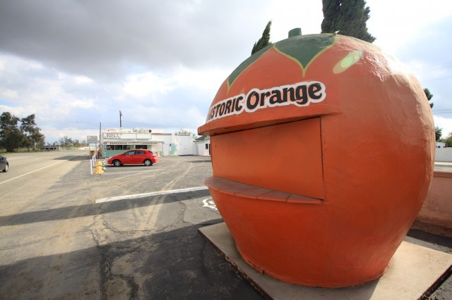 Giant Orange