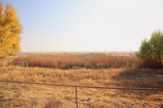 Tule Elk State Reserve 4