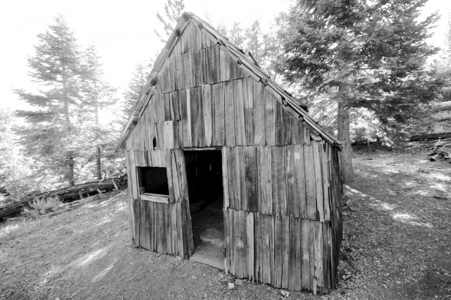 Vincent Cabin Black and White
