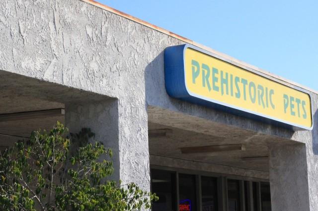 prehistoric pets 1