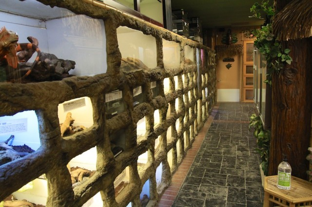 Prehistoric Pets: A Reptile Zoo and Store - California