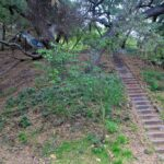 Murphys Ranch 16