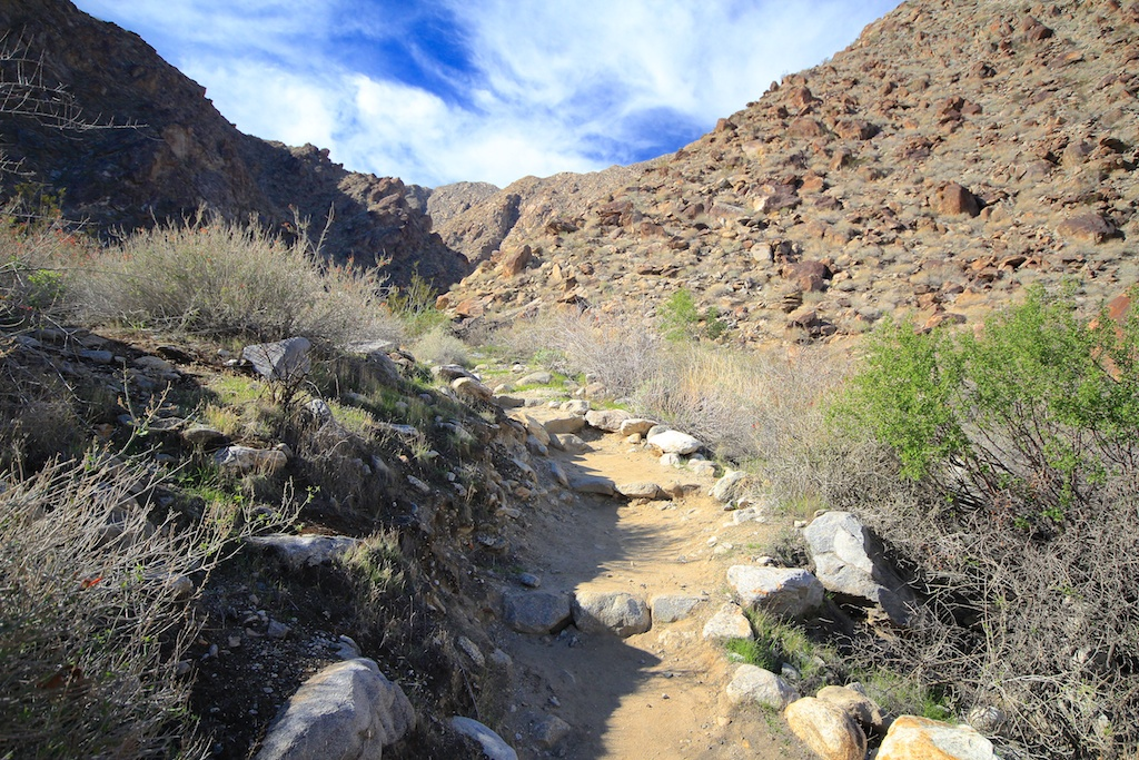 Tahquitz Canyon Falls: Palm Springs 50ft Waterfall