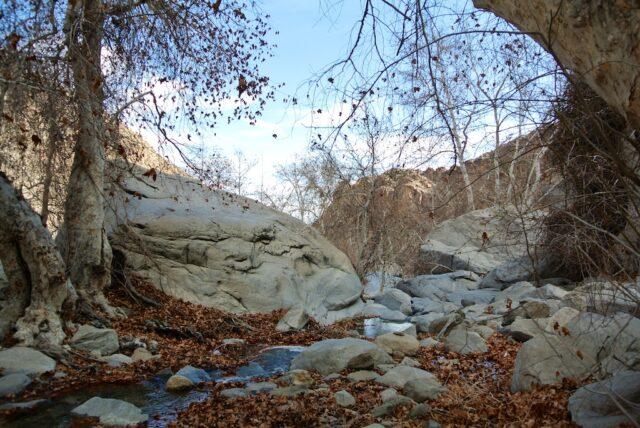 Tahquitz Falls 4