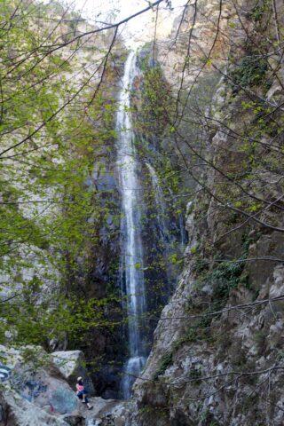 Bonita Falls 17