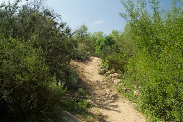 Harford Springs Reserve 3