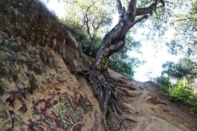 Vanalden Cave 11