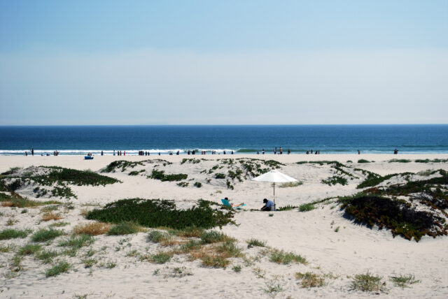 coronado sand dunes