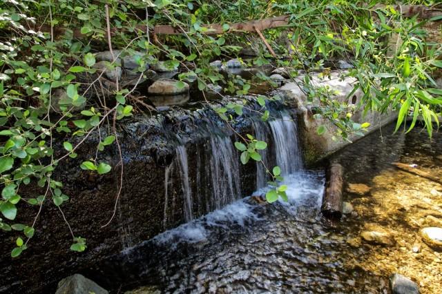 Eaton Canyon Falls 18