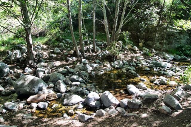 Eaton Canyon Falls 19