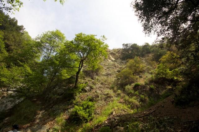 Monrovia Canyon Falls 14