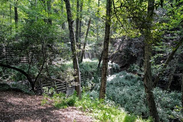 Monrovia Canyon Falls 9