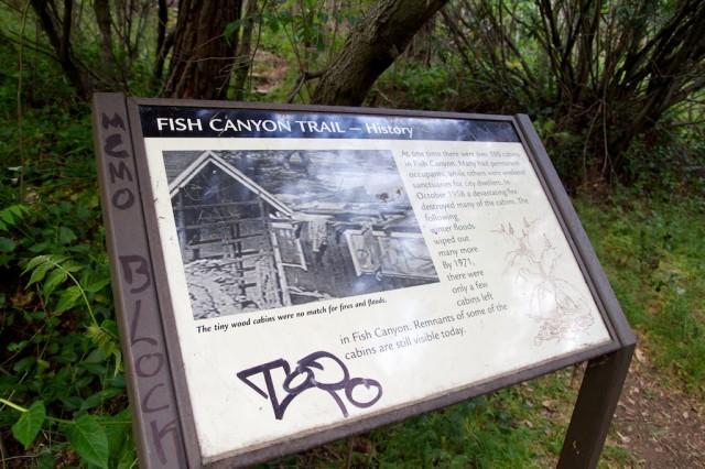 Fish Canyon Falls 8