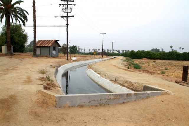 Gage Canals 9