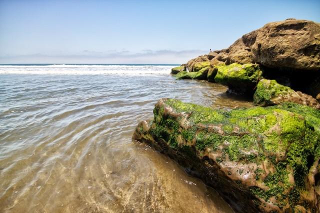San Buenaventura Beach 5