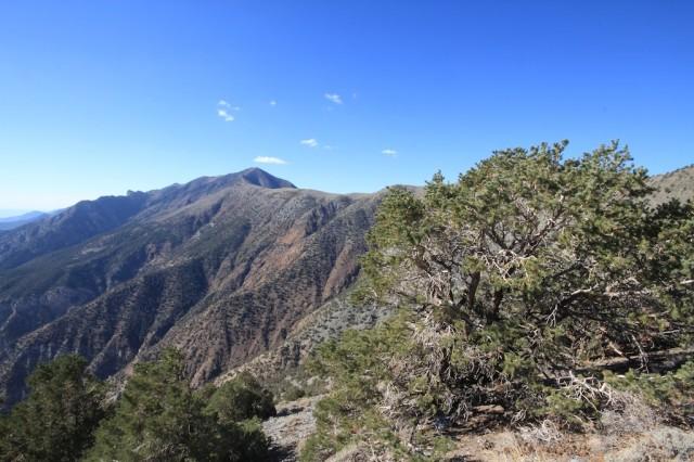 Telescope Peak 19