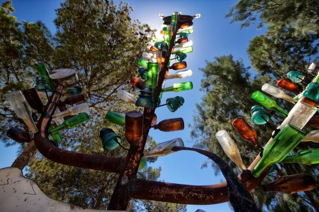 Bottletree Ranch 10